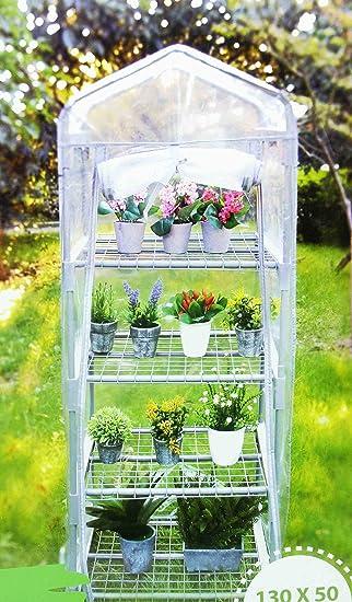 Mini Gewachshaus Fur Balkon Treibhaus Fruhbeet Pflanzen Regal Aus