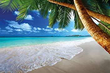 great-art Fototapete Palmenstrand - 336 x 238 cm 8-teiliges Wandbild Karibik Strand Wandtapete Tapete