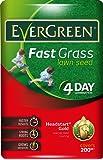 EverGreen Fast Grass Lawn Seed Bag, 6 kg