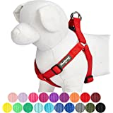 Blueberry Pet Classic Solid Color Adjustable Dog Harness, 19 Colors, Matching Collar & Leash Available Separately