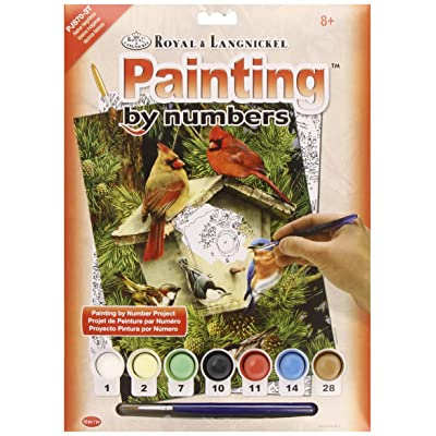 "ROYAL BRUSH Junior Small Paint by Number Kit 8-3/4""X11-3/4-Native Neighbors: Arts, Crafts & Sewing"