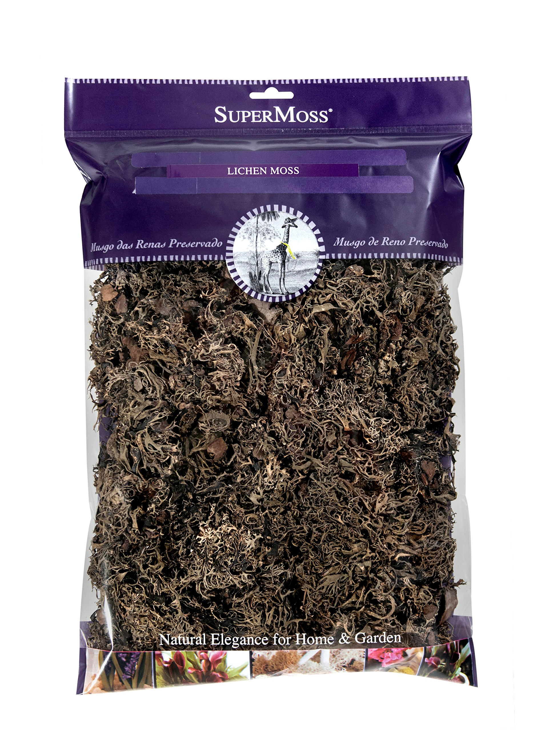 Super Moss (21802) Lichen Parmelia (No Stem), Brown, 8oz