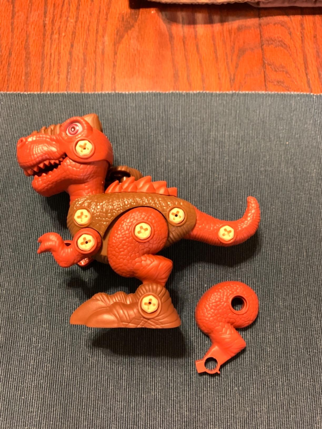 DIY 3-1 Dinosaur Take Apart Kid's Toy Set photo review