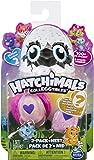 """Hatchimals 6041329 """"Colleggtibles 2 Pack + Nest - Season 2"""""""