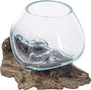 MyGift Mini Natural Driftwood & Molten Glass Bowl Tabletop Plant Terrarium
