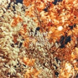 In the Fall Ep [Vinyl]