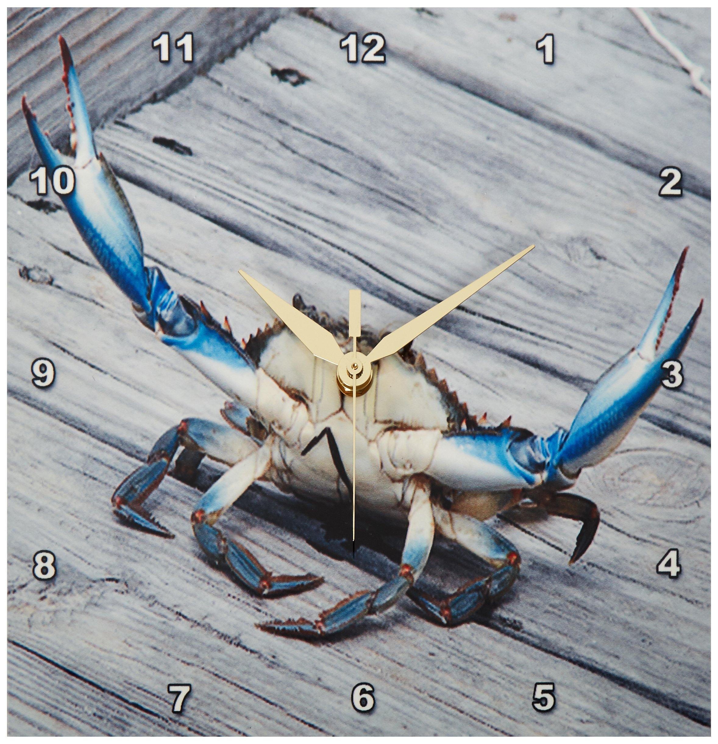 3dRose dpp_63150_1 Blue Crab Marine, Creature, Animal, Animals, Wildlife, Ocean, invertebrate, Blue, Crab, Seafood Wall Clock, 10 by 10-Inch