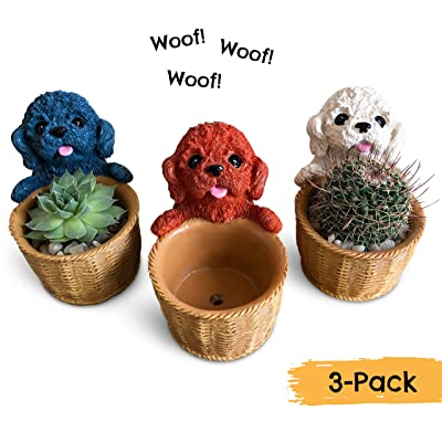 Small Succulent Pots - Set of 3 Cute Puppy Dog Succulent Planters for Real or Artificial Succulents, Cactus & Other Small Indoor Plants : Garden & Outdoor
