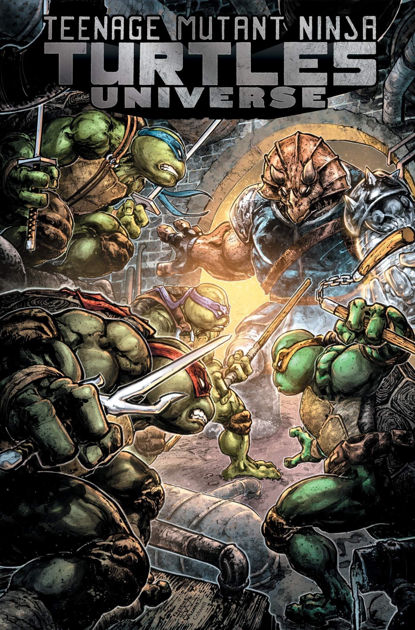 Teenage Mutant Ninja Turtles Universe, Vol. 4: Home (TMNT ...