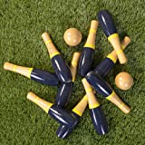 Lawn Bowling Game/Skittle Ball- Indoor and