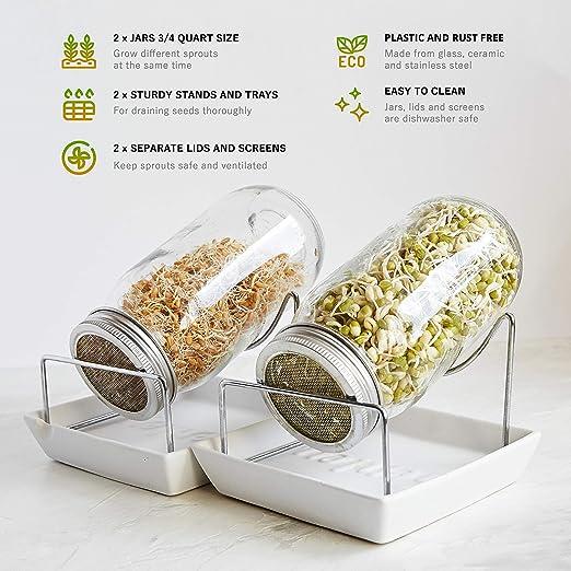 Yemiany tarro de germinar,Germinador,Kit de 2 tarros de germinaci/ón con tapas de acero inoxidable,soportes y germinador de tarros de vidrio Mason para cultivar brotes de microgreens,alfalfa,frijoles
