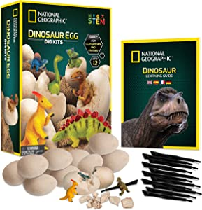 NATIONAL GEOGRAPHIC Dinosaur Dig Kit – 12 Dino Shaped Dig Bricks with Dinosaur Figures Inside, 12 Excavation Tool Sets, Perfect Activity for Egg Hunt or Dig Party, Great STEM Toy for Boys and Girls