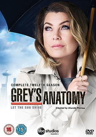 Grey\'s Anatomy - Season 12 [DVD]: Amazon.co.uk: Ellen Pompeo, Justin ...