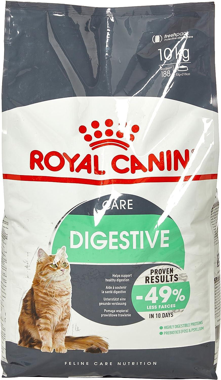 Royal Canin Comida para gatos Digestive Care 10 Kg: Amazon.es ...