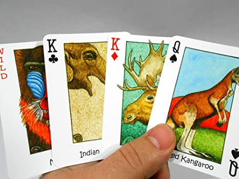 WILD! Playing Cards featuring WILD Animals with Seek-N-Find Hidden Images