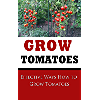 Grow Tomatoes: Effective Ways How to Grow Tomatoes (English Edition)