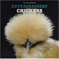 Extraordinary Chickens 2019 Wall Calendar