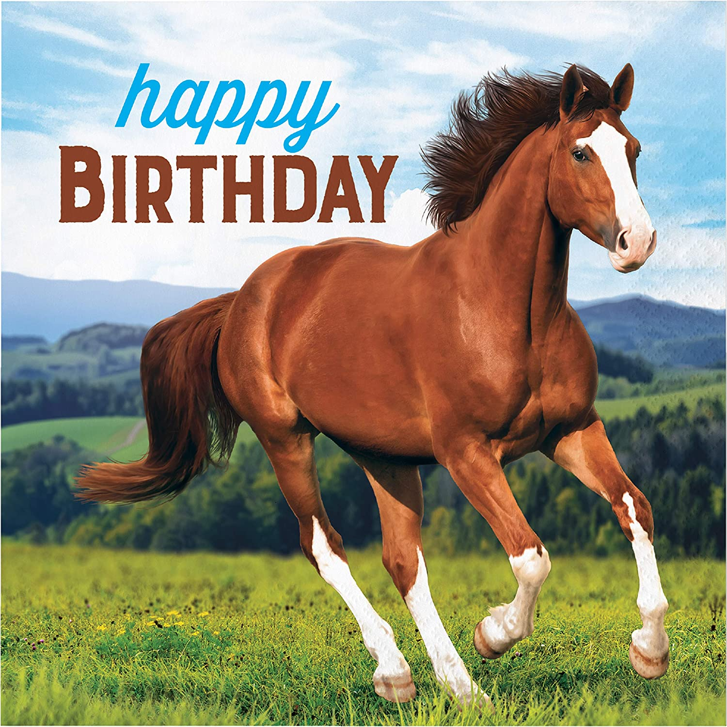 Amazon.com: Wild Horse Happy Birthday Napkins, 48 ct: Toys & Games