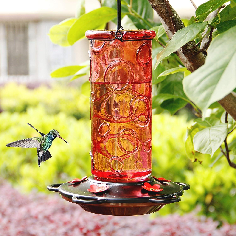 Juegoal 28 oz Glass Hummingbird Feeders for Outdoors, Wild Bird Feeder with 5 Feeding Ports, Metal Handle Hanging for Outdoor Garden Tree Yard, Red