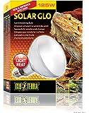 Exo Terra Solar-Glo High Intensity Self-Ballasted Uv/Heat Mercury Vapor Lamp