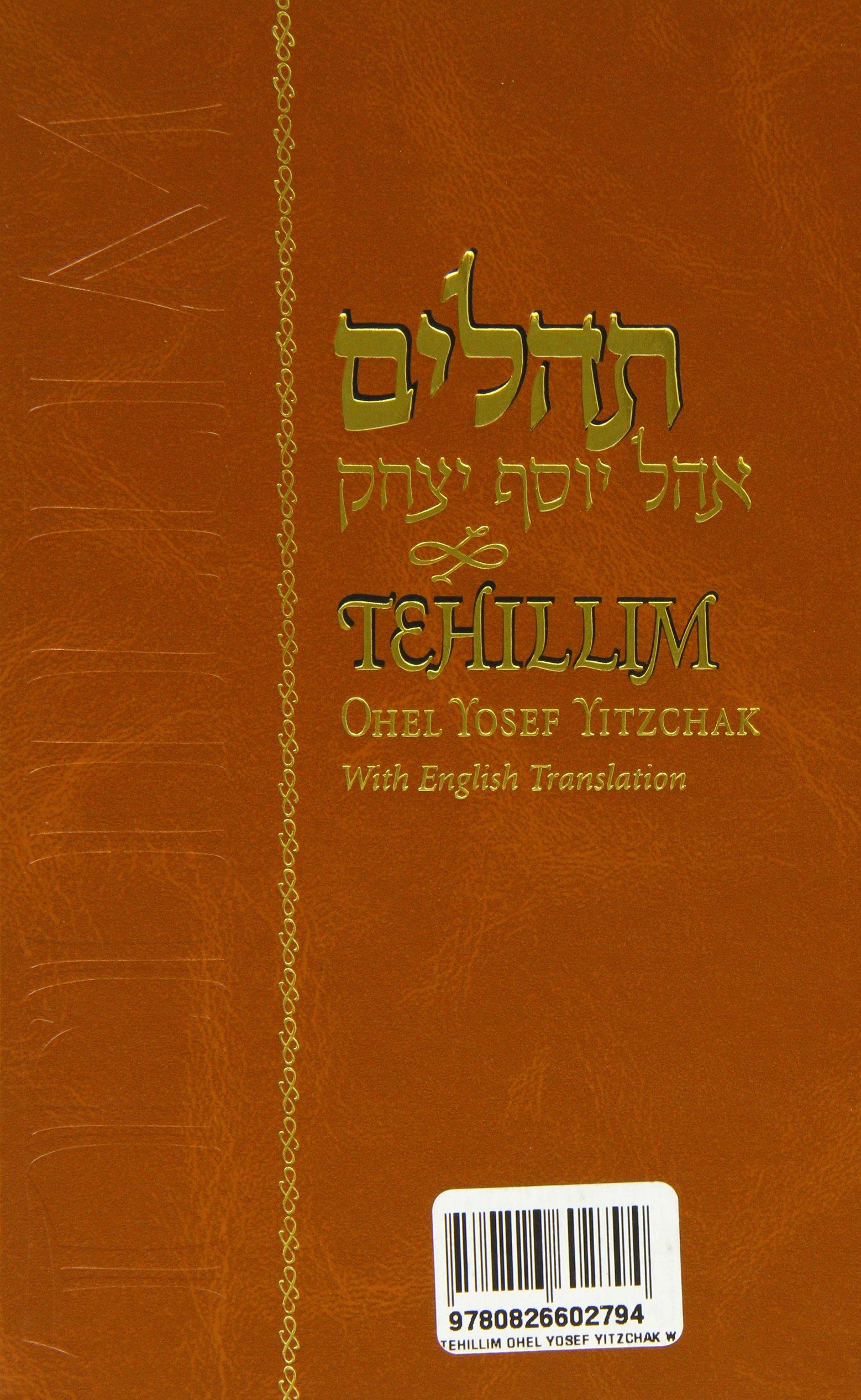 Tehillim : With English Translation ebook