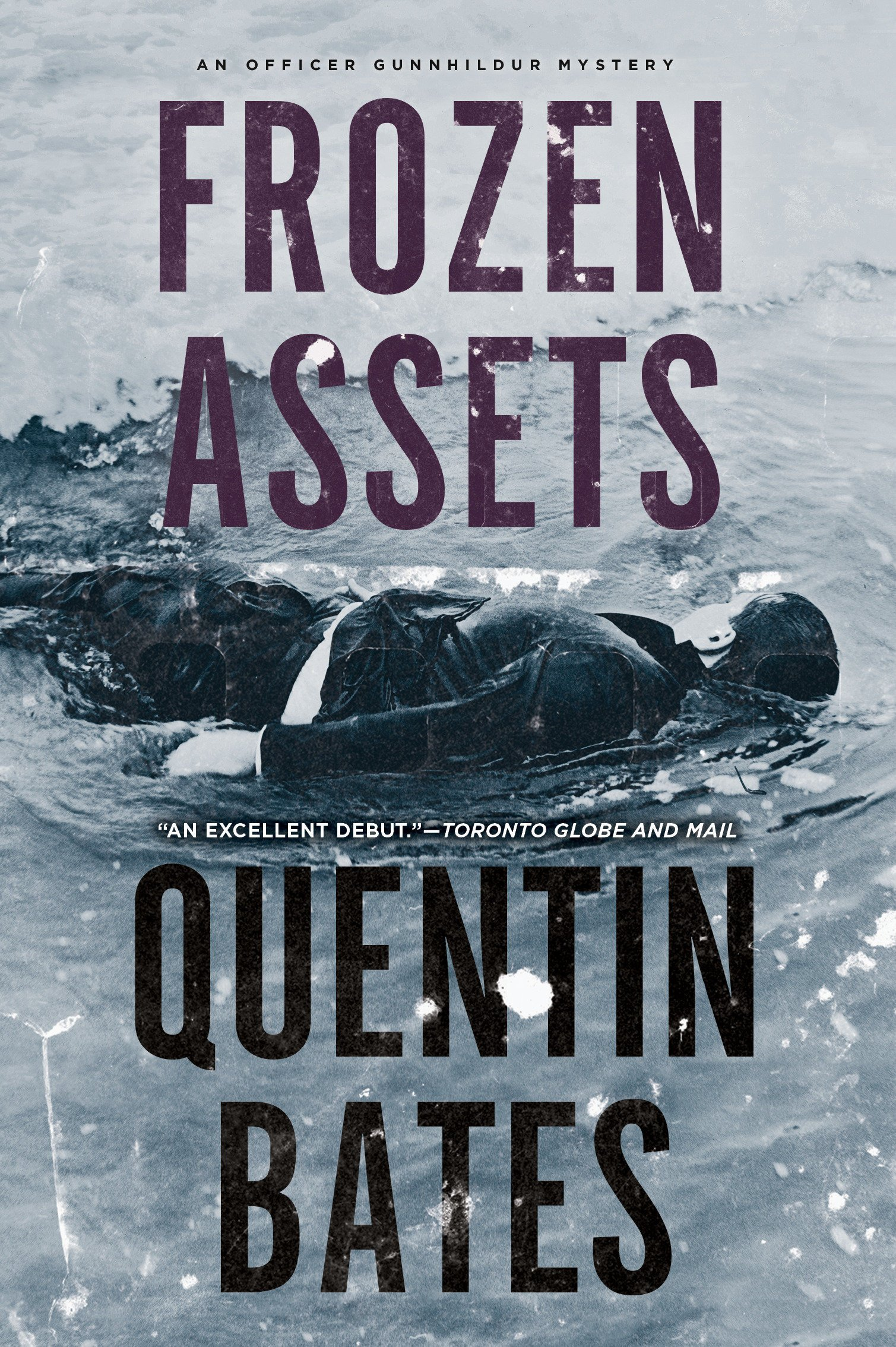 Download Frozen Assets (A Sergeant Gunnhildur Novel) ebook