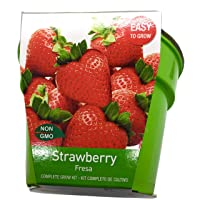 Complete Strawberry Grow Kit | Planter, Quality Seeds, Premium Grow Mix, Detailed Instructions | Seeds Imported from Holland