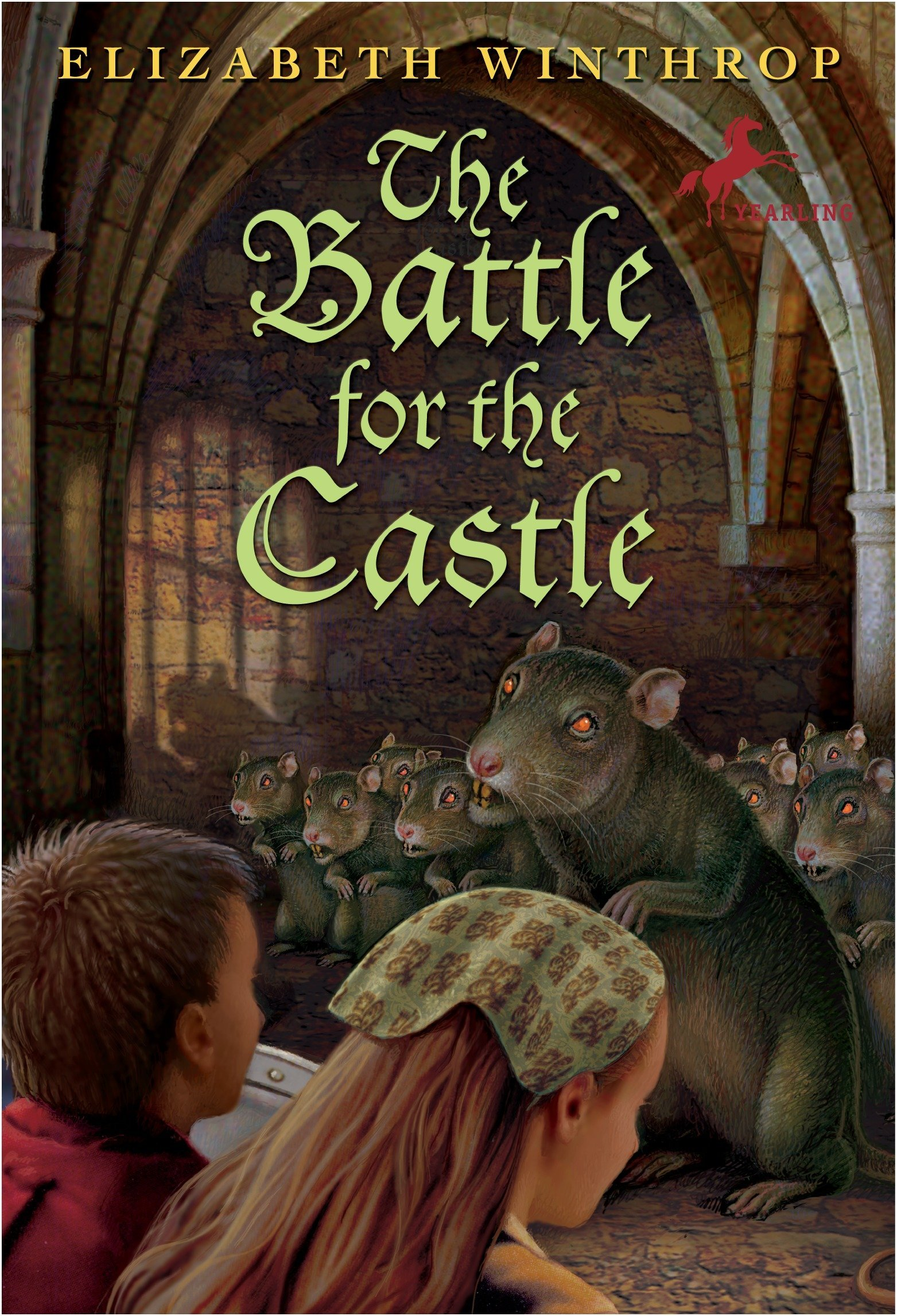 Download The Battle for the Castle ebook