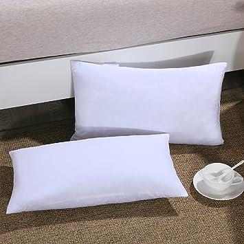 Amazon.com: Homelike Moment - Relleno de almohada de plumón ...