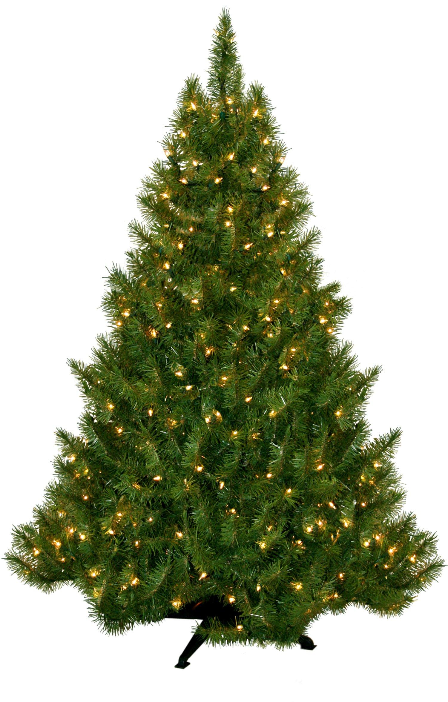 Portland Fir Tree, 6.5-Feet, 450 Clear Lights