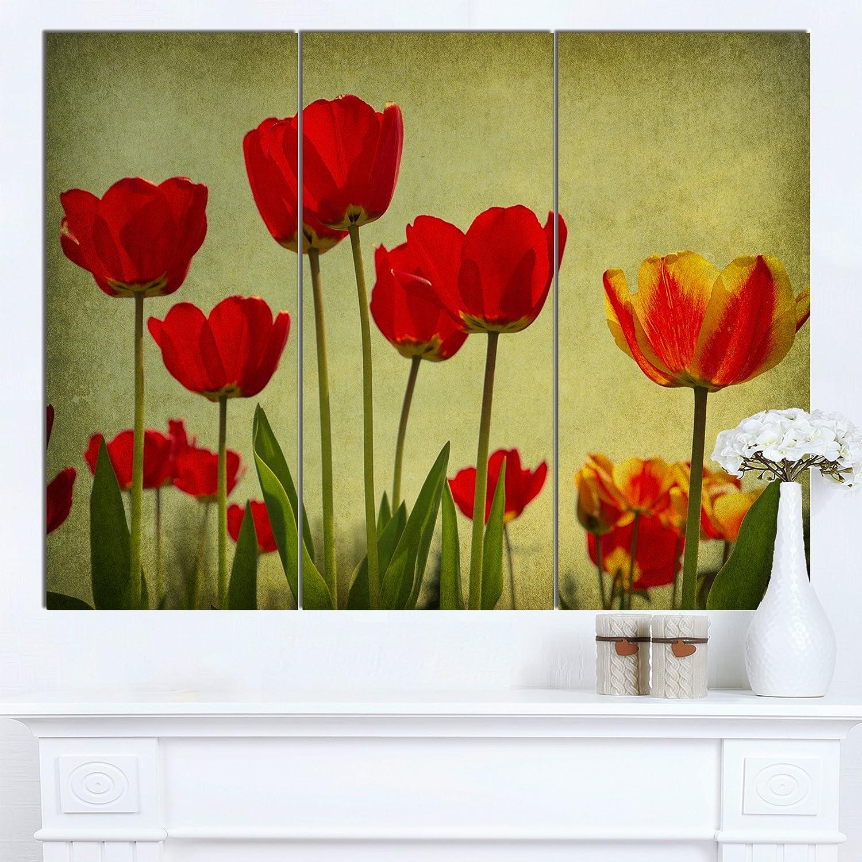 Amazon.com: Designart Wild Red Poppy Flowers in Sky Modern Floral ...