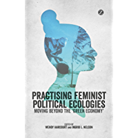 Practising Feminist Political Ecologies: Moving Beyond the 'Green Economy' (English Edition)