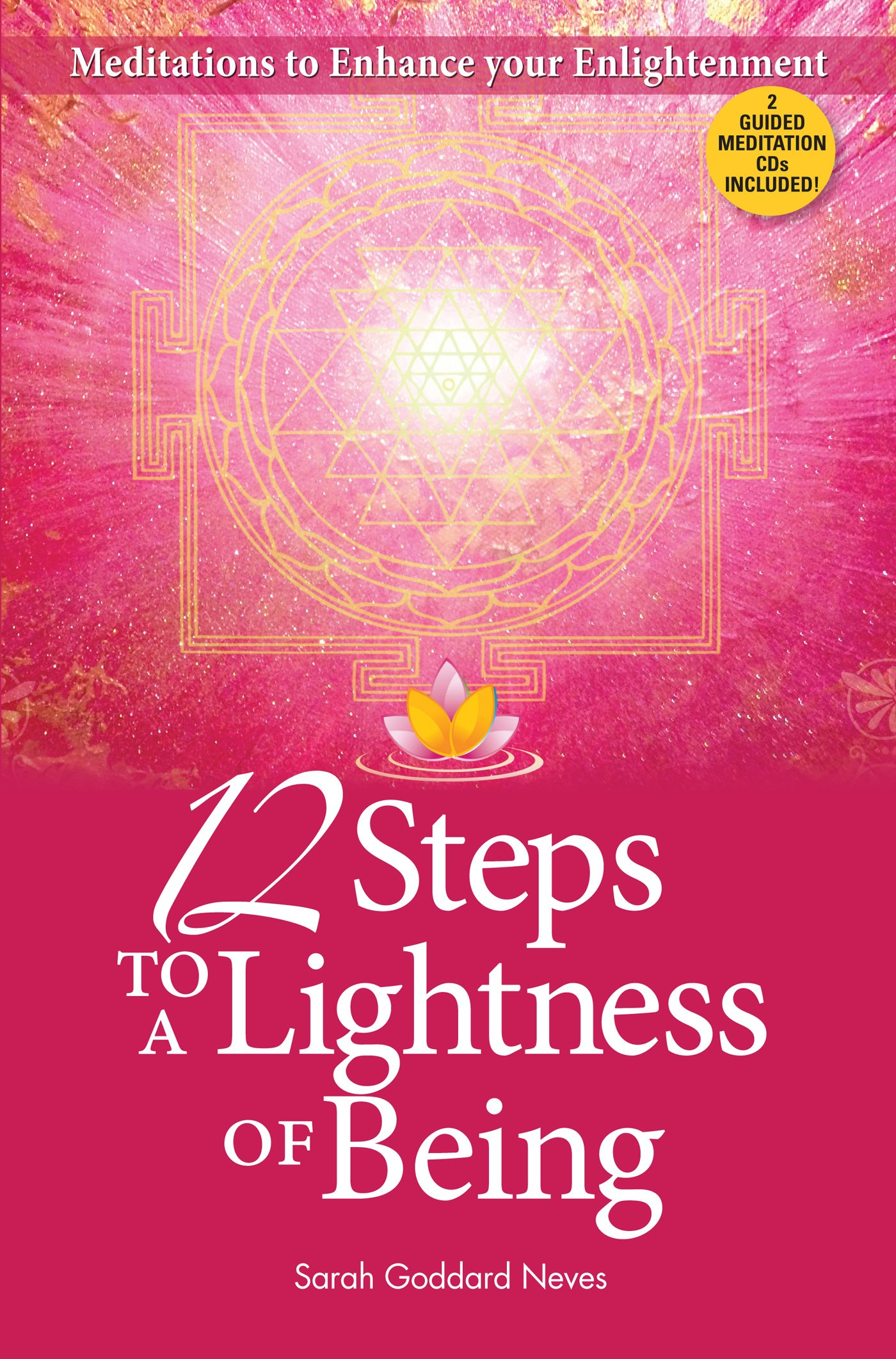Download 12 Steps to a Lightness of Being ebook