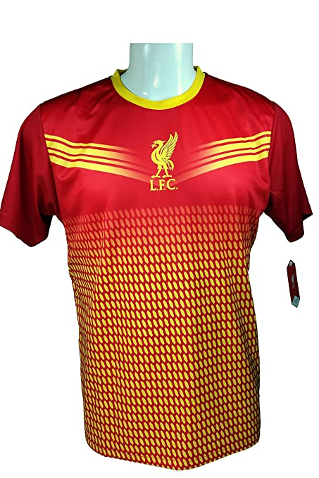 c58017c63 Liverpool F.C. Soccer Official Adult Soccer Training Performance Poly Jersey  P005