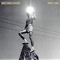 Love What Survives (Vinyl)
