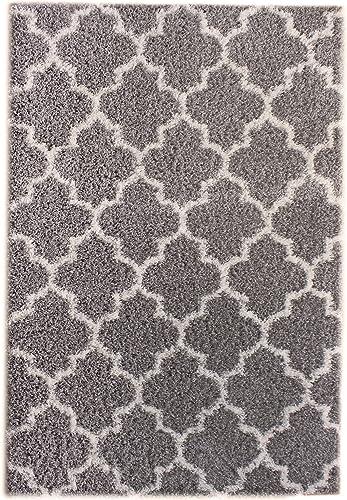 Super Area Rugs Cozy Plush Trellis Shag Rug, 2 x 3 , Gray White