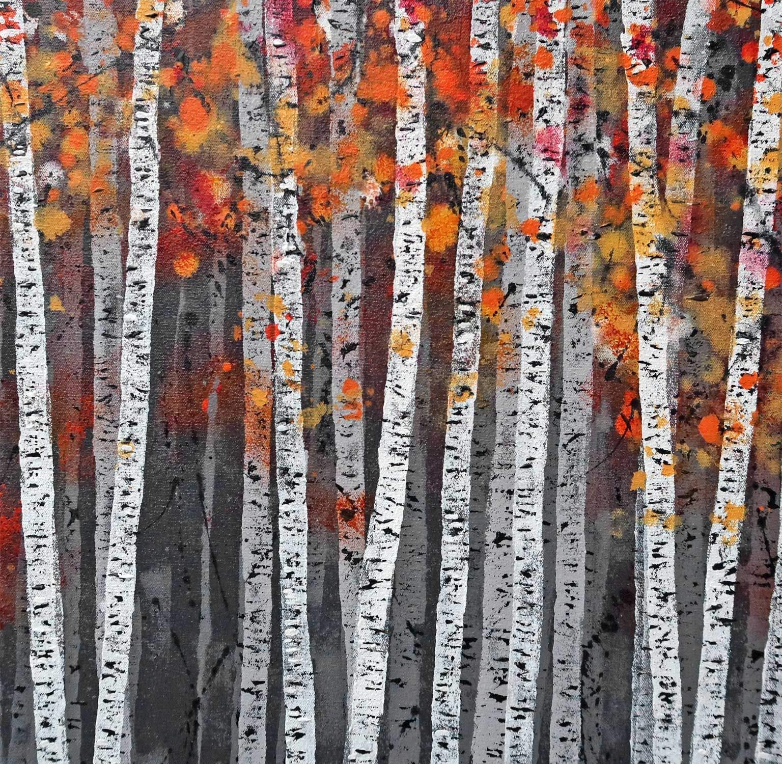 Autumn Birch Wood