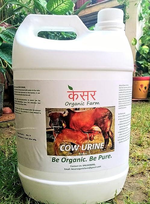 Kesar organic farm Desi Cow Urine for Plants (5 Ltr)