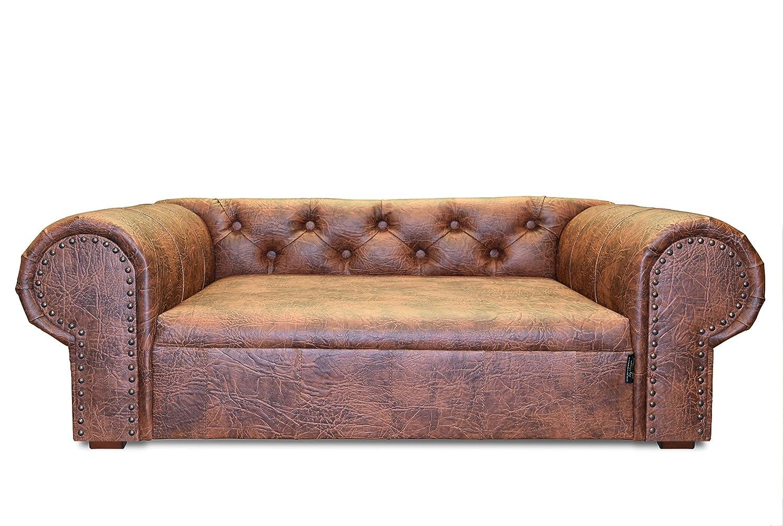 Edy Diseño ED de oha001 Perros sofá Ohio New Chesterfield ...