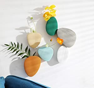 Purzest 6 Pcs Wall Succulent Planters, Ceramic Wall Mount Planter Holder, Decorative Hanging Plant Pots Flower Vase for Indoor, Outdoor (Modern Color