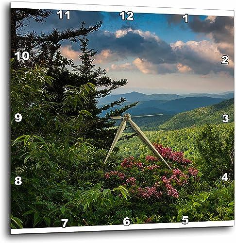 3dRose Mountain Laurel, Beacon Heights, Blue Ridge Parkway, North Carolina – Wall Clock, 10 by 10-Inch DPP_209355_1
