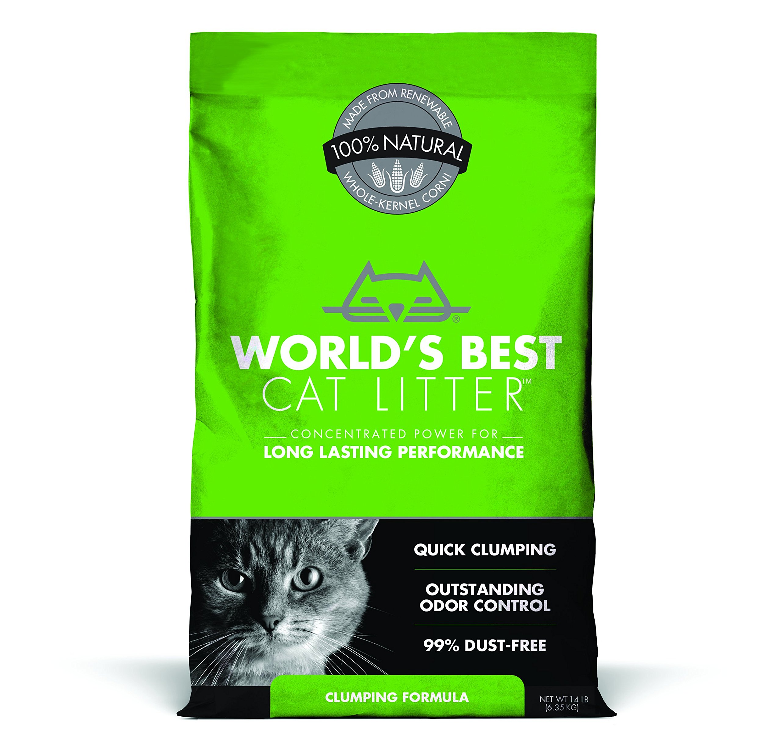 Best Unscented Cat Litter