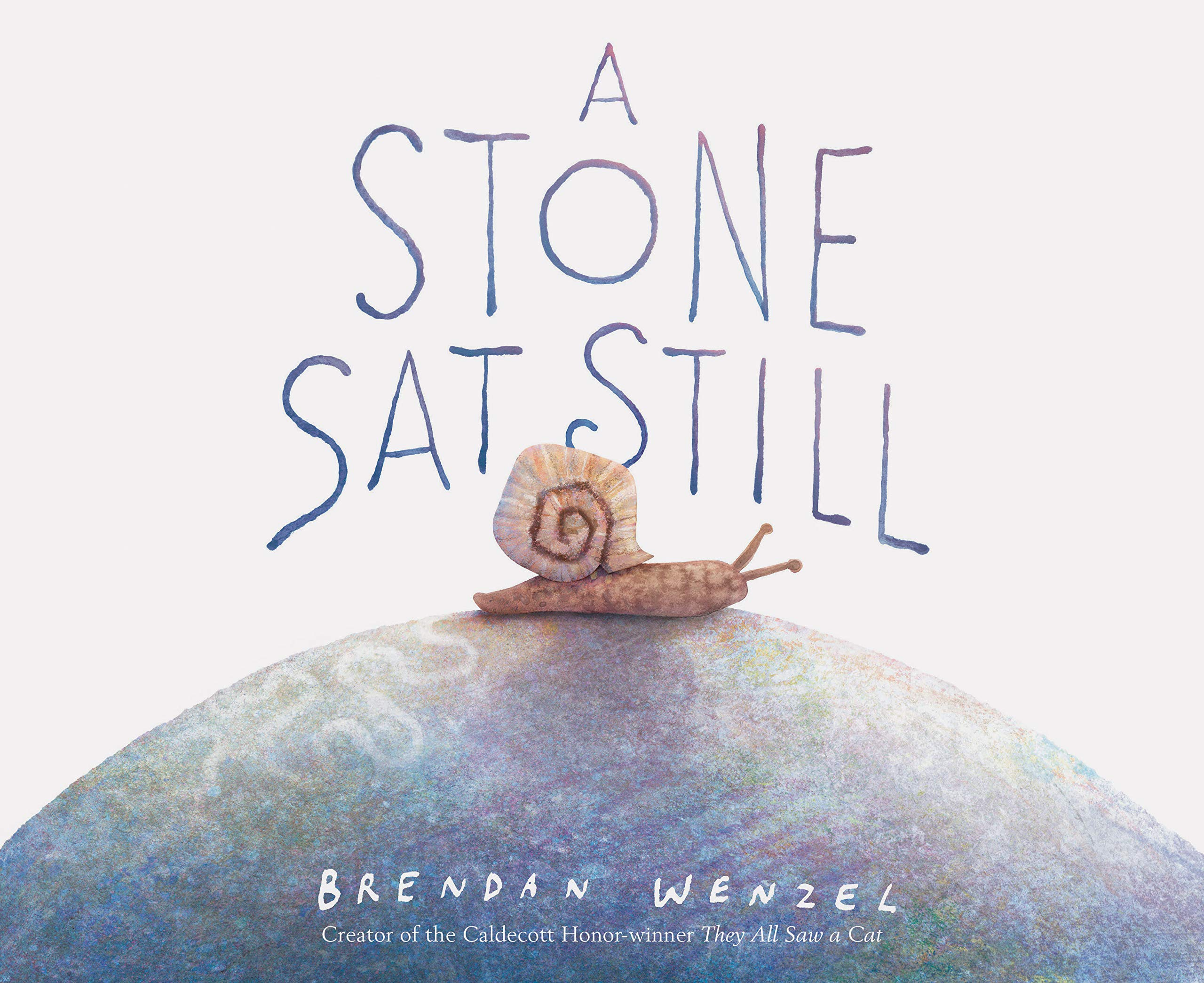 Image result for a stone sat still wenzel amazon