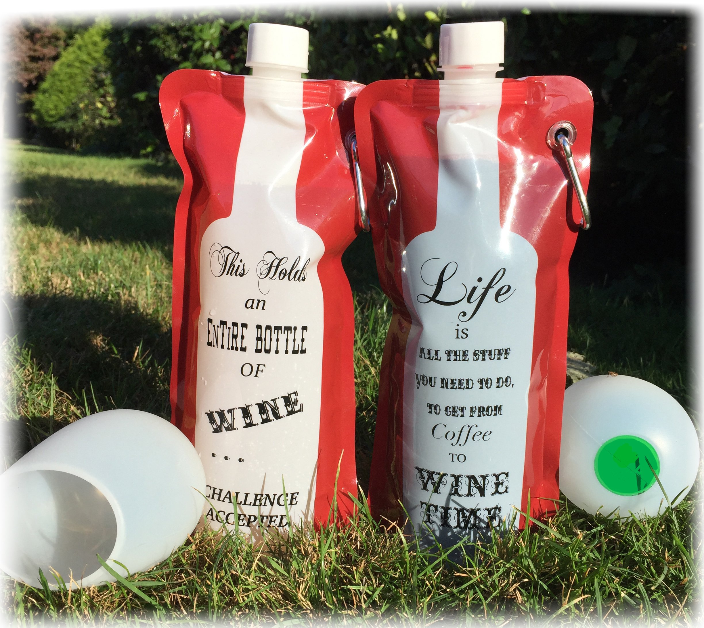 Funny Wine to Go Bag and Silicone Cups (Wine Time)