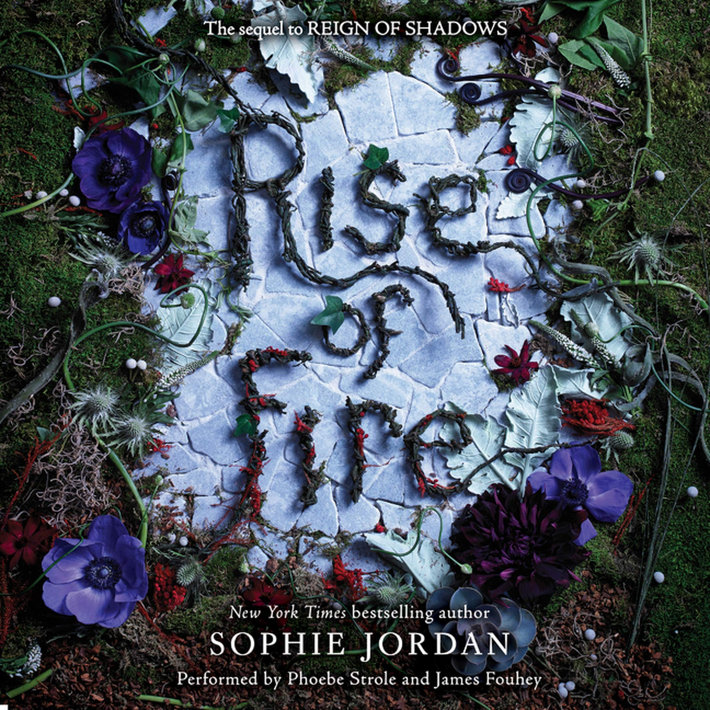Download Rise of Fire (Reign of Shadows series, Book 2) pdf