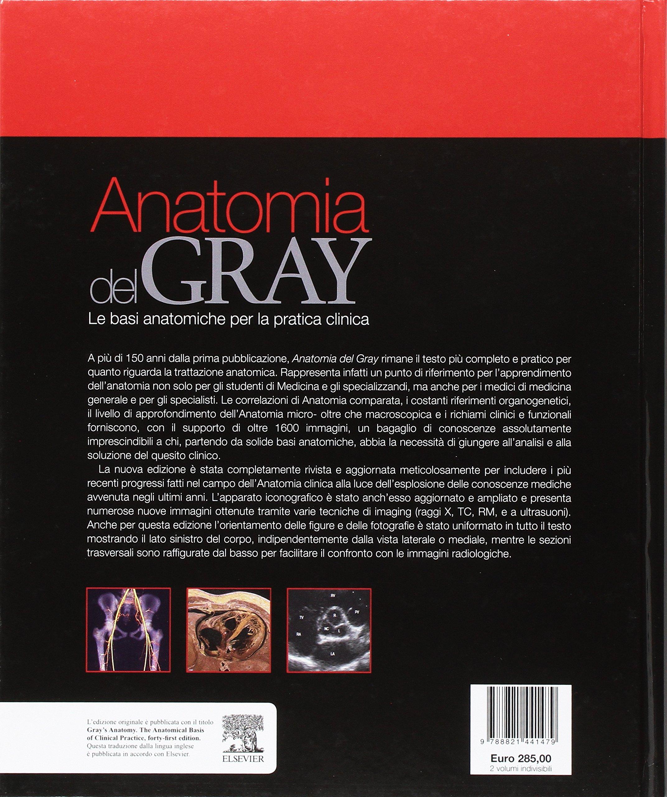 Anatomia del Gray. Le basi anatomiche per la pratica clinica: Amazon ...