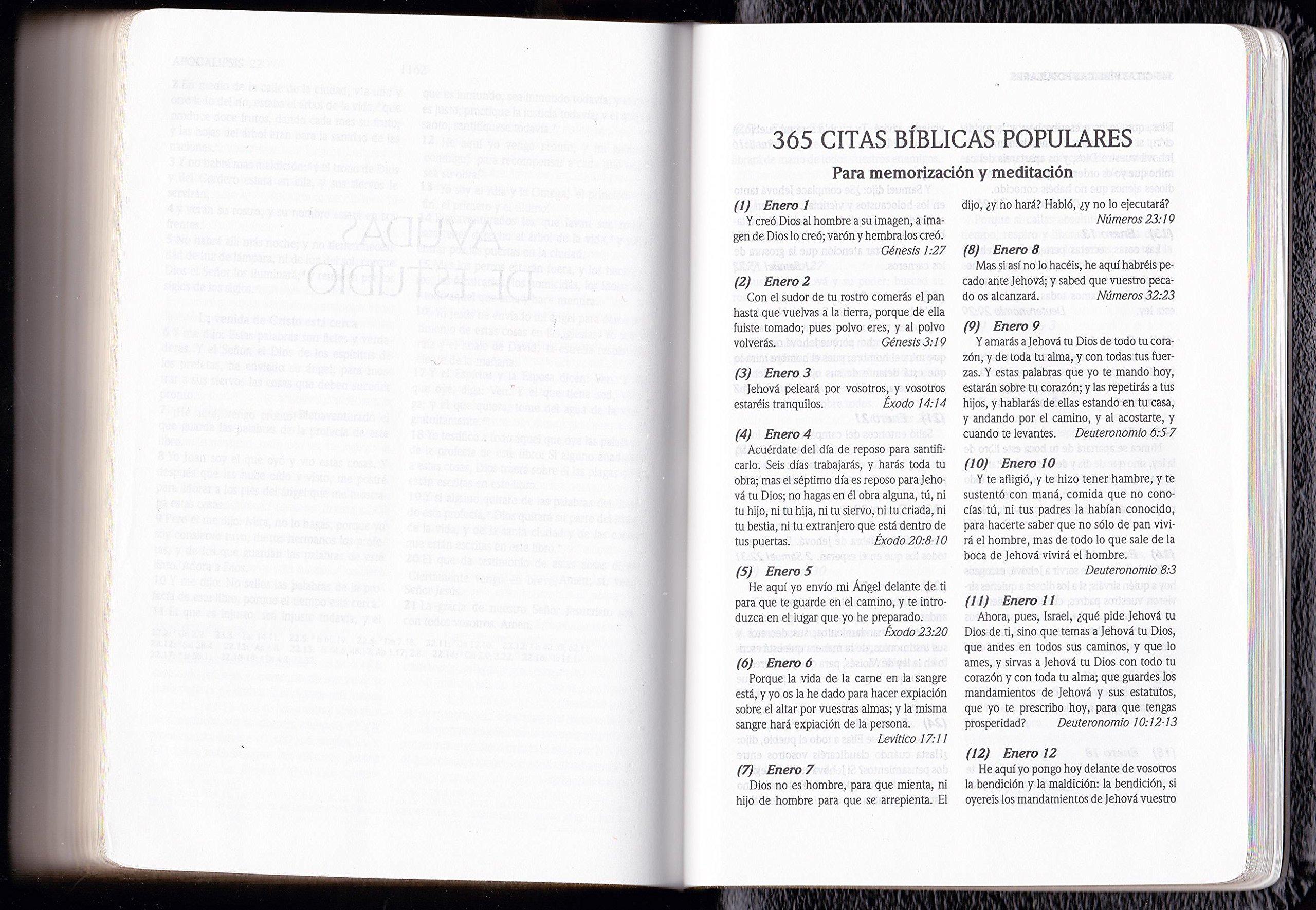 Biblia Compacta, Letra Grande, Con References, Palabras de Christo en Rojo, RVR 1960 Negro Cuero de Prima: 9781433606656: Amazon.com: Books
