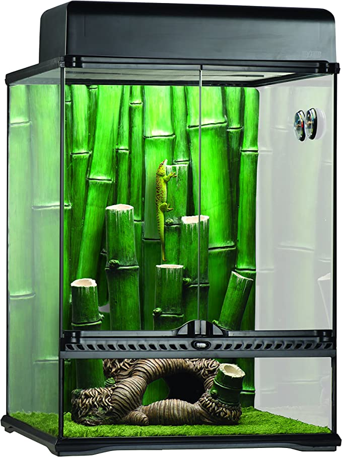 Exo Terra Kit Terrario Bamboo Grande, 45 x 45 x 60 cm