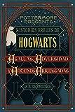 Historias breves de Hogwarts: Agallas, Adversidad y Aficiones Arriesgadas (Pottermore Presents nº 1)