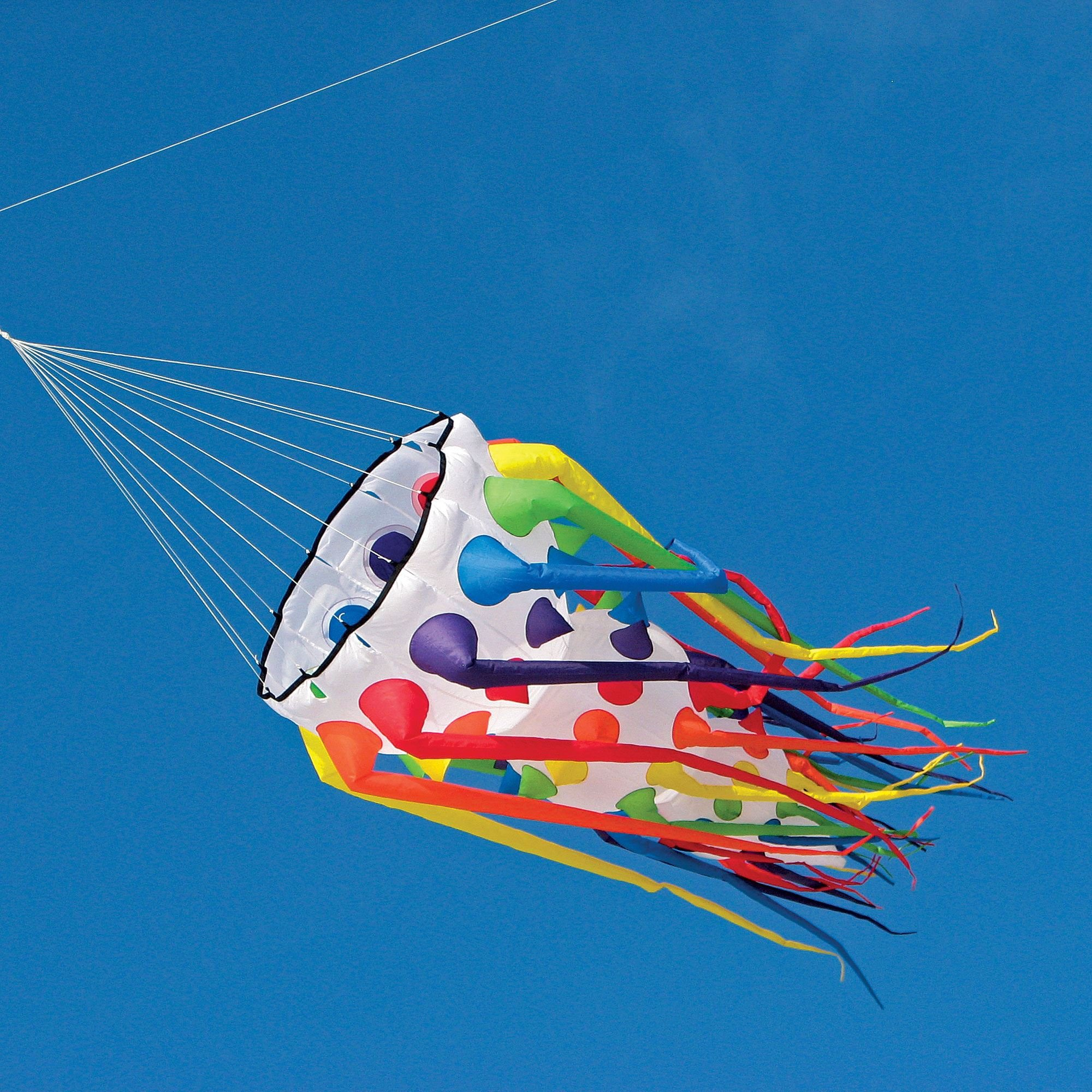 5-ft. Willi Koch Hydroid Inflatable Kite Accessory
